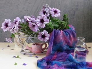 Собирать пазл Gentle petunia онлайн