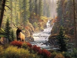 Собирать пазл Deer at the falls онлайн