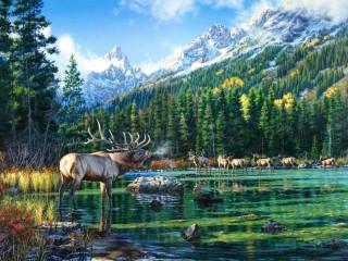 Собирать пазл Deer lake онлайн