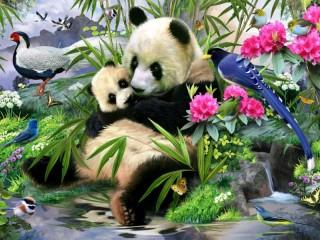 Собирать пазл Pandas and birds онлайн