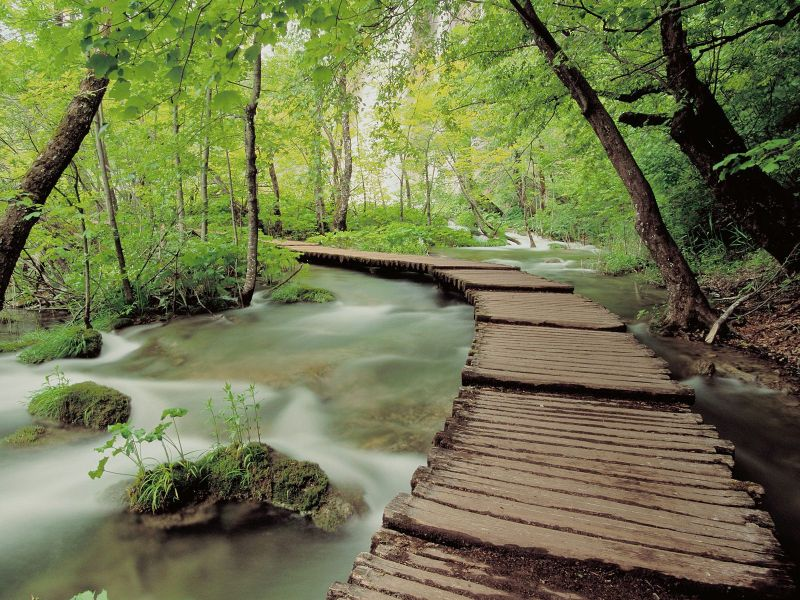 Jigsaw Puzzle Solve jigsaw puzzles online - Park in Croatia