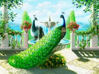 Собирать пазл Peacocks on the terrace онлайн