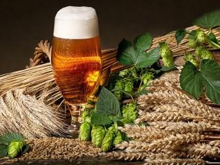 Собирать пазл Beer and hops онлайн