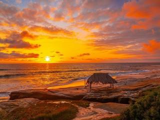 Собирать пазл The beach in California онлайн