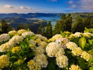 Собирать пазл Portugal nature онлайн