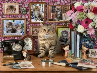 Собирать пазл Relatives of the cat онлайн