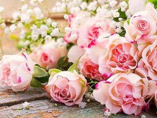 Собирать пазл Roses and gypsophila онлайн
