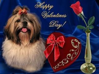 Собирать пазл With Valentine's day онлайн
