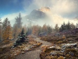 Собирать пазл The mysterious trail онлайн