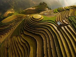 Собирать пазл Terrace farming онлайн