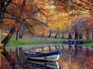 Собирать пазл A quiet pond онлайн
