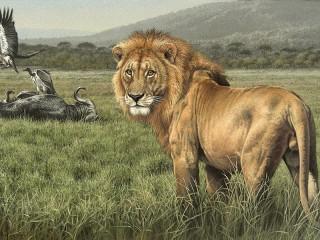 Собирать пазл The king of beasts онлайн
