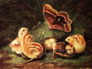 Собирать пазл Chicks and butterfly онлайн