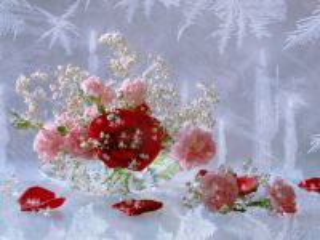 Собирать пазл Flowers behind glass 1 онлайн