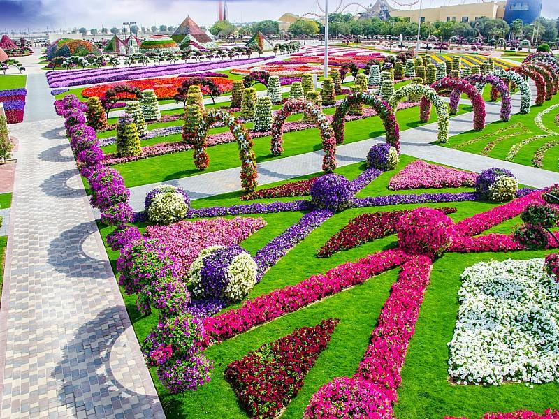Jigsaw Puzzle Solve jigsaw puzzles online - Tsvetochniy park