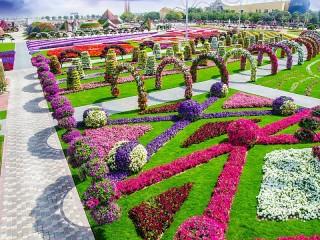Собирать пазл Tsvetochniy park онлайн