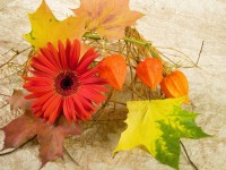 Собирать пазл Flower and leaves онлайн