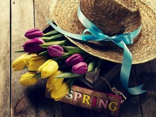 Собирать пазл Tulips and a hat онлайн