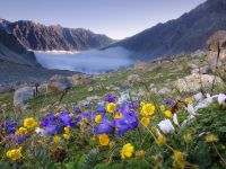 Собирать пазл Spring in the mountains 1 онлайн