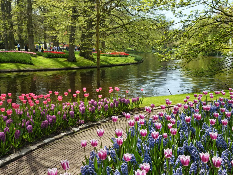 Jigsaw Puzzle Solve jigsaw puzzles online - Spring in park