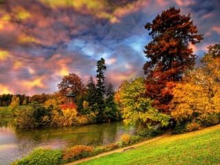 Собирать пазл Bright colours of nature онлайн