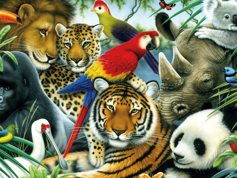Jigsaw Puzzle Solve jigsaw puzzles online - Animals and birds