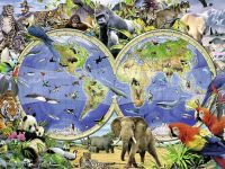Собирать пазл Animal world онлайн