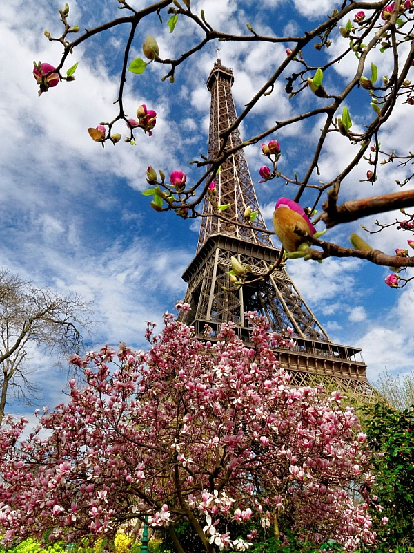 Jigsaw Puzzle Solve jigsaw puzzles online - Spring in Paris